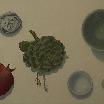 #Succulent and pomegranate  by Lynn Winters